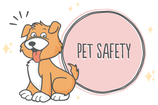 Dog Safety at Happy Tails